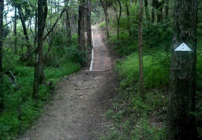 Talk a walk through the cedar ridge preserve