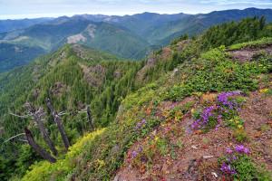 Elk-Kings Mountain Traverse