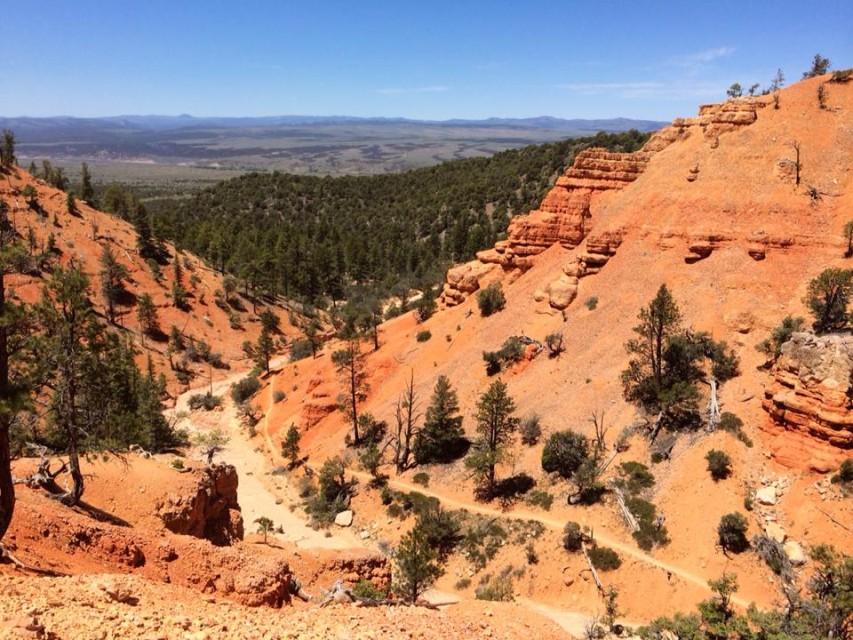 Bryce 100 Course